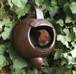Teapot Bird Nester. A quirky way of providing a nesting site for small birds, including wrens, robins, wagtails & thrushes - birds that prefer open nesting sites =)
