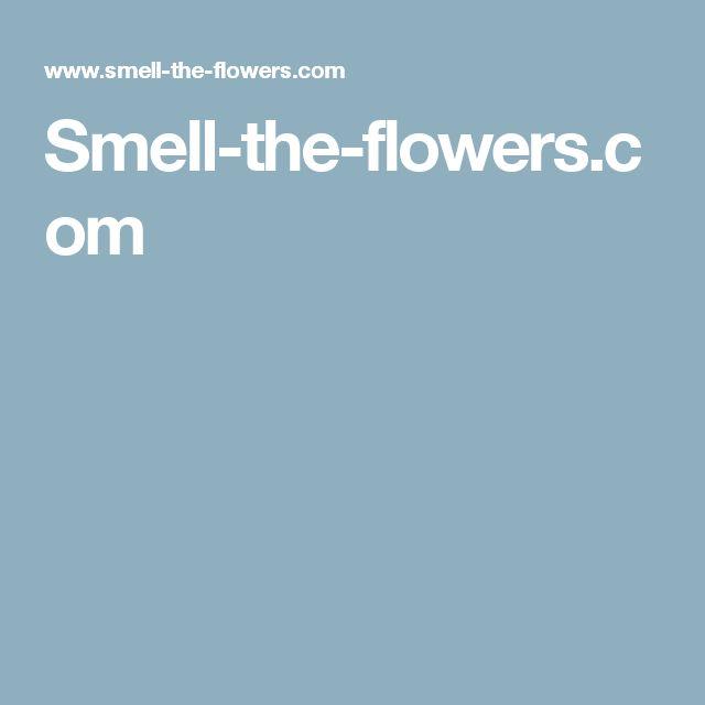 Smell-the-flowers.com