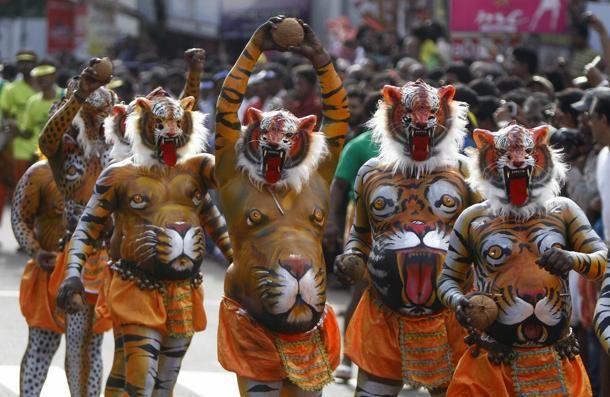 Attori dipinti come le tigri ballano durante le feste che segnano la fine della festa del raccolto annuale di Onam nella città di Trichur, nello stato meridionale indiano del #Kerala.