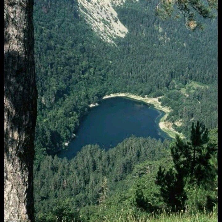 Davlumbaz plateau-Akyazı-Sakarya