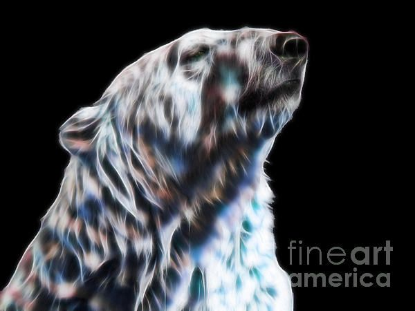 Who you looking at? - Polar bear fractal by Tracey Everington. Merchandise and prints available