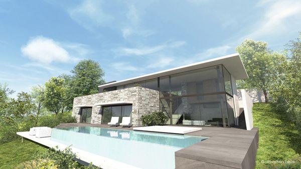Maison contemporaine avec s jour cath dral et habillages for Constructeur piscine alsace