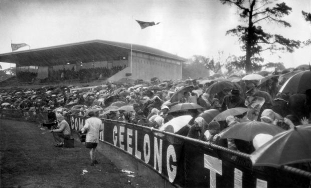 Footy fans huddle under umbrellas in pouring rain at Kardinia Park while watching Geelong play Footscray in 1965.