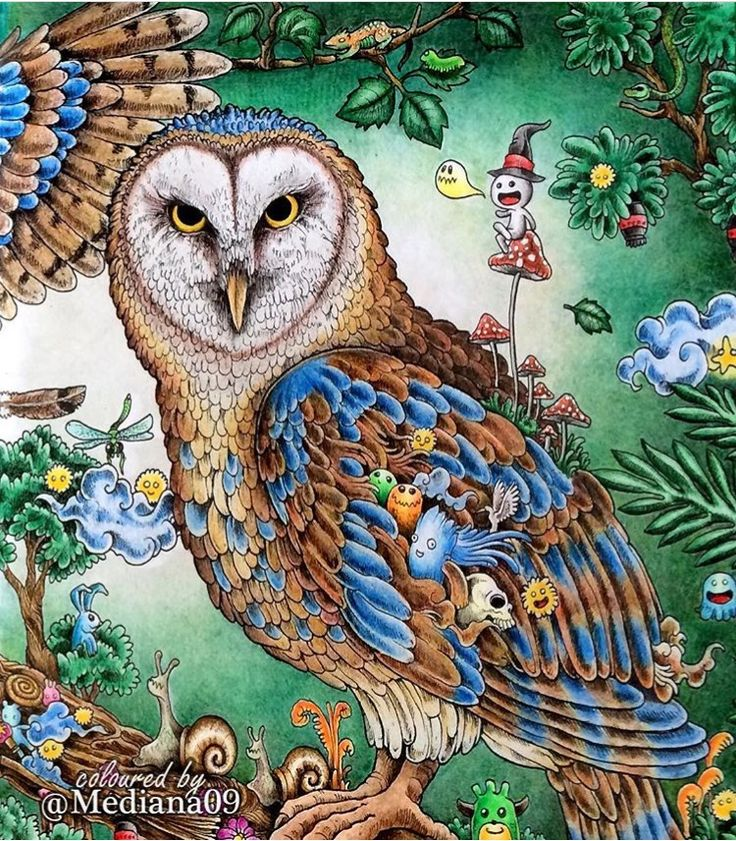Inspirational Coloring Pages By Mediana09 Animorphia Inspiracao Coloringbooks Livrosdecolorir Adultcoloring