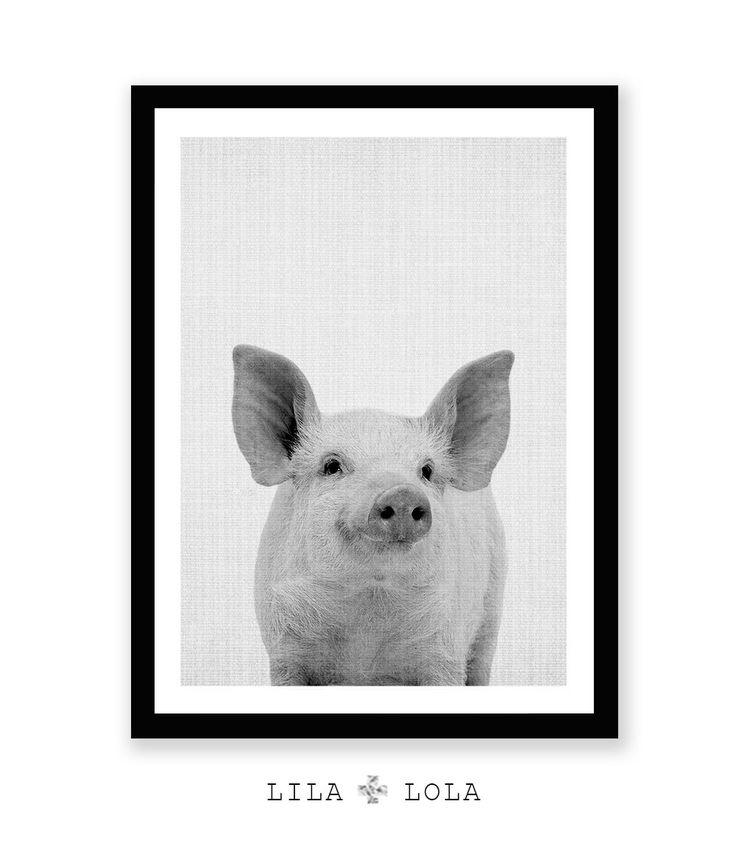 Pig Print Baby Piglet Wall Art Cute Farm Animal Photo by LILAxLOLA