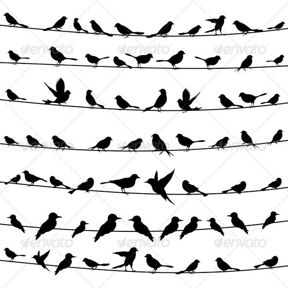 Bird on a wire template - photo#47