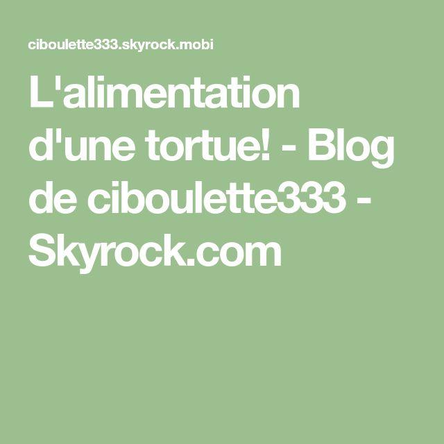 L'alimentation d'une tortue! - Blog de ciboulette333 - Skyrock.com