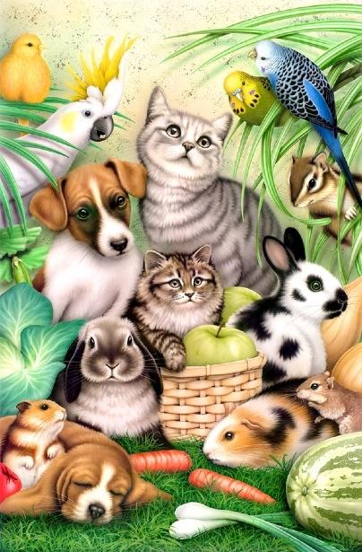 by Howard Robinson (Pets)