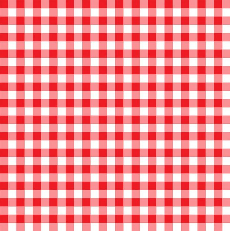 Red And White Checkered Rug: Picnic Blanket Pattern