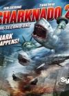 View Torrent Info: Sharknado 2 The Second One 2014 HDTVRip XviD-HELLRAZ0R