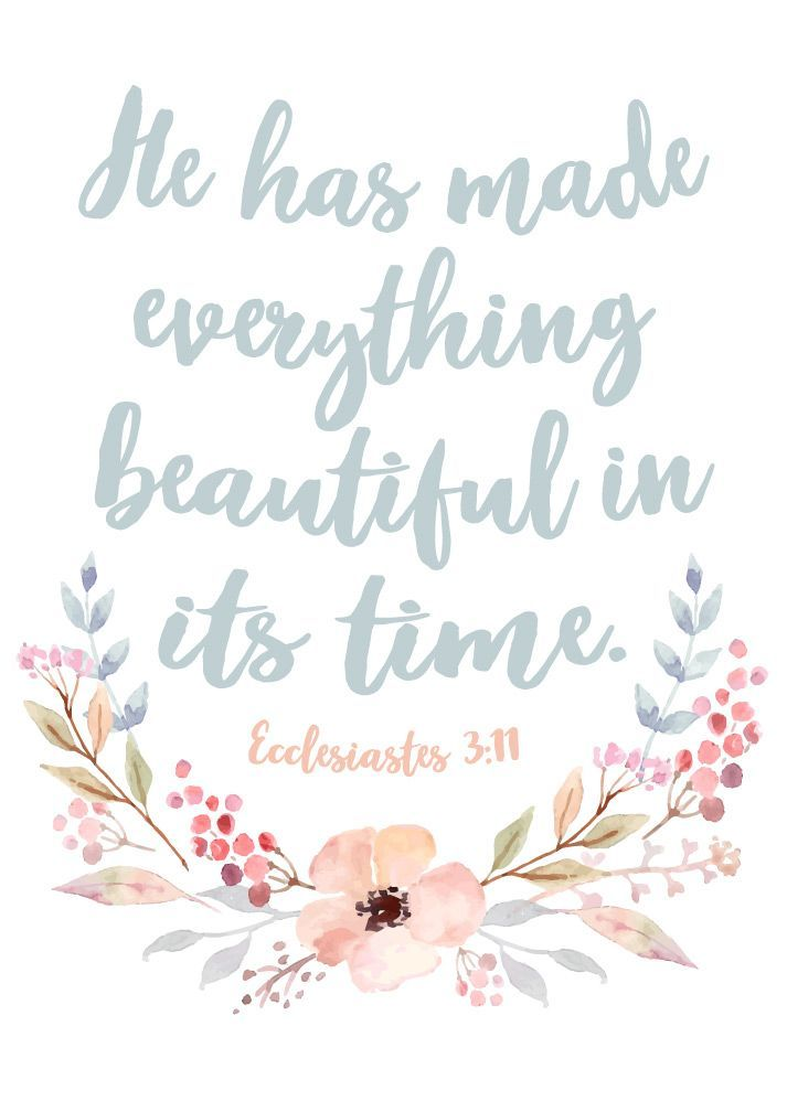 He has made everything beautiful in its time Ecclesiastes 3:11  The seasons of life include both good and bad times. We go through mountains, and we go through valleys. We go through successes, and we go through failures. We have wins, and we have losses. Yet through everything He created you'll find beauty if you look at it through the eyes of Jesus. #hehasmadeeverythingbeautiful
