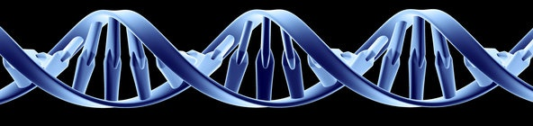 Amazon Web Services' Big Free Genetic Database. Amazon's cloud computing unit, Amazon Web Services, will store for public use the entire contents of the National Institutes of Health's 1000 Genomes Project, a survey of genetic information from 1,700 individuals . 03/29/2012~ The New York Times