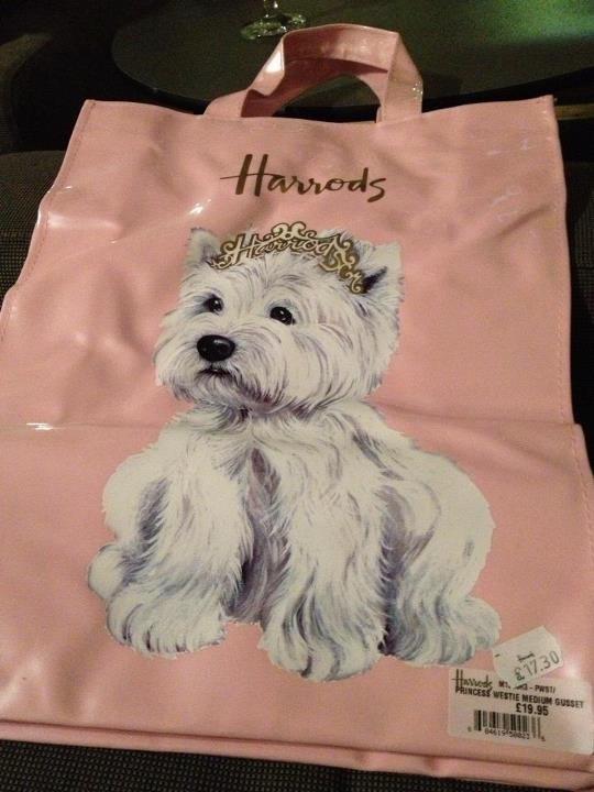 Harrods Westie Dogs Westies Puppies And Kitties
