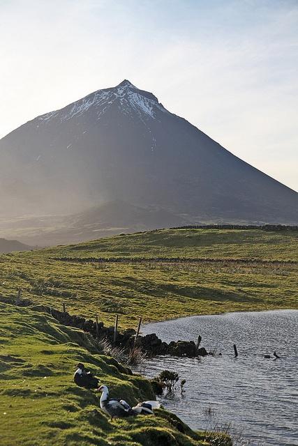 Pico - Azores, Portugal by Gabriel Soeiro Mendes, via Flickr