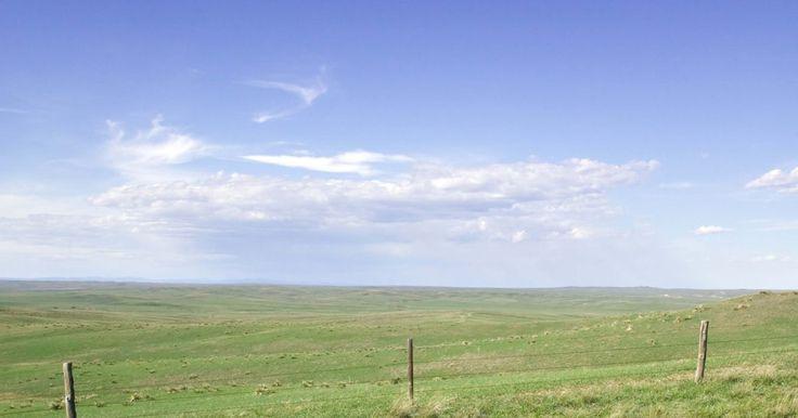 Como distinguir um agricultor de um fazendeiro?. Ambos os fazendeiros e agricultores estão no negócio de aumentar a comida para levar ao mercado. Eles também, mais frequentemente do que não, encontram-se no mesmo lado da conservação da terra e problemas de erosão. É do melhor interesse de ambos os fazendeiros e agricultores de proteger seus recursos mais vitais: terra e água. Fazendeiros e ...
