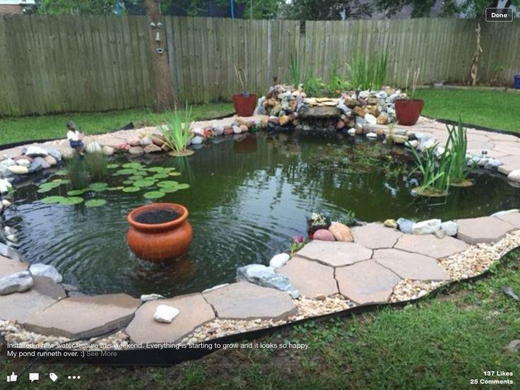 78 Best Goldfish Pond Ideas Images On Pinterest Backyard