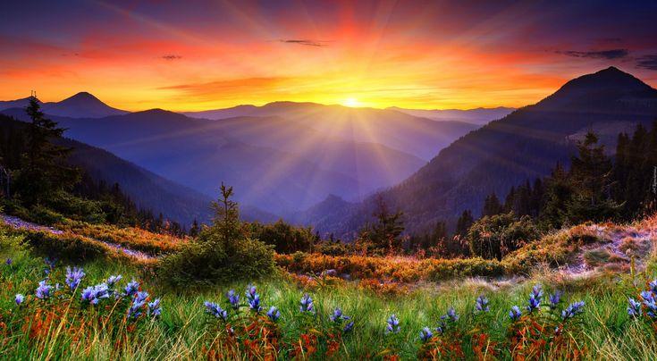 Góry, Wschód słońca, Roślinność, Drzewa