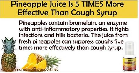 The juice from fresh pineapples can suppress coughs five times more effectively than cough syrup. According to a recent research,  raw extracts from pineapple could decrease mucus five times faster than over-the-counter cough syrups. Patients recovered 4.8 times faster and exhibited a decrease in all symptoms related to coughing, especially hacking.  How to Use Pineapple Juice to Treat Coughs Bromelain is an enzyme that has anti-inflammatory properties. Bromelain helps the body get rid of…