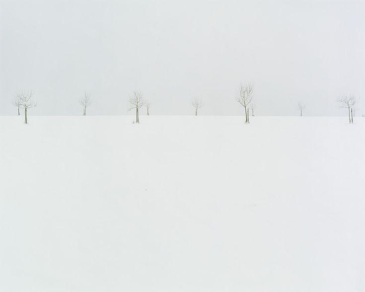 Nicholas Hughes / Edge: Verse II / Image #4 / 2007