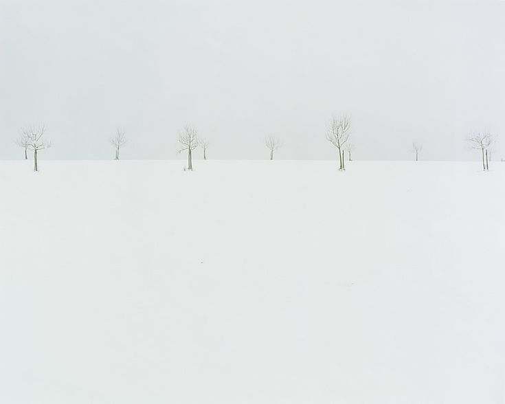 Winter Landscape With Rocks Sylvia Plath : Best ideas about nicholas hughes on sylvia