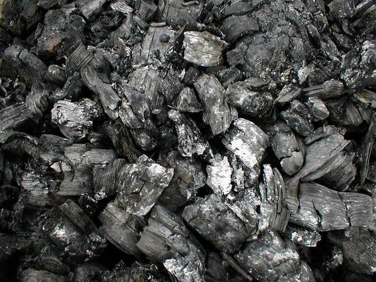 How to Make Charcoal in 5 Steps