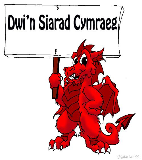 As a fluent welsh speaker, the welsh language in my opinion gives us our own identity as a Country, whilst English keeps us a part of the UK