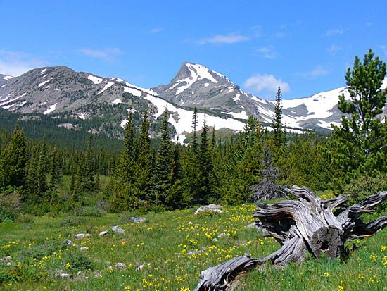Balsams wilderness ski area dick head