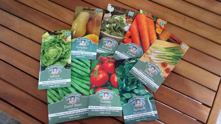 One of the hardest decisions when planning a vegie patch is what and when to plant, and whether to use seeds or seedlings?    I plant seeds; this is a cheaper option and I have not had too many issues with growing from seeds.   #Garden