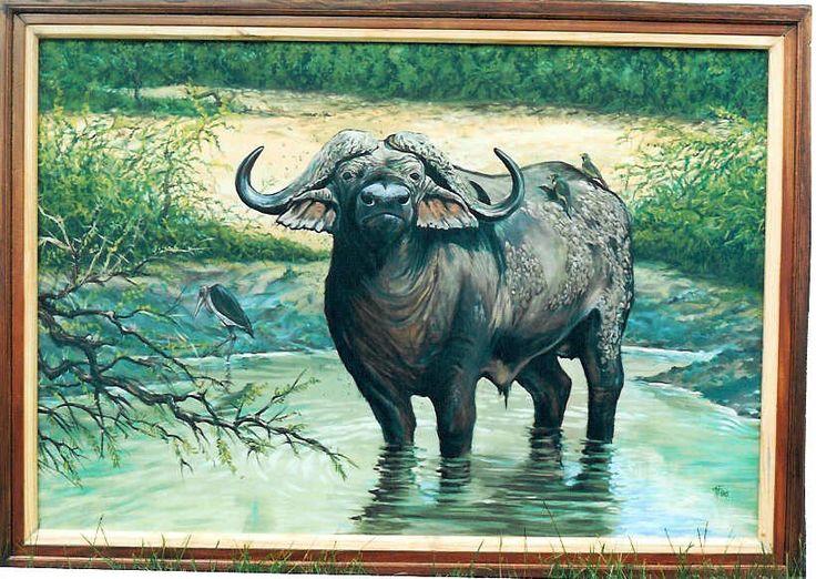 The old Buffalo by Tony Fredriksson