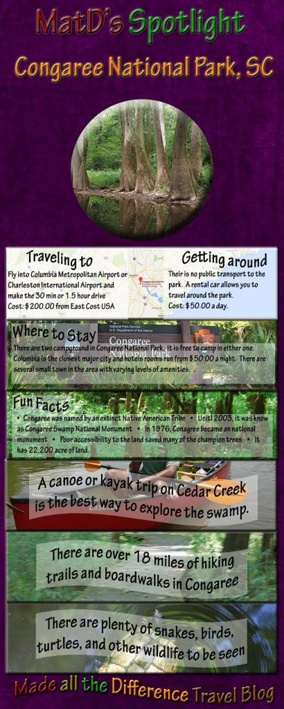 Best 25 Congaree national park ideas on Pinterest Columbia