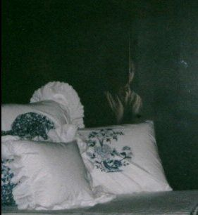 A haunting picture of a ghost taken in a woman's bedroom. The woman that took this picture in the early 1970's was simply making up her bed in a new set of sheets and pillow cases when she felt something in the room. She couldn't see it with her naked eye but when she took a picture and had the film developed she was shocked to find this image of woman staring back at her. This ghost picture has haunted her ever since.