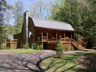cabin rentals rental pet getwy with lake cabins friendly george fireplace