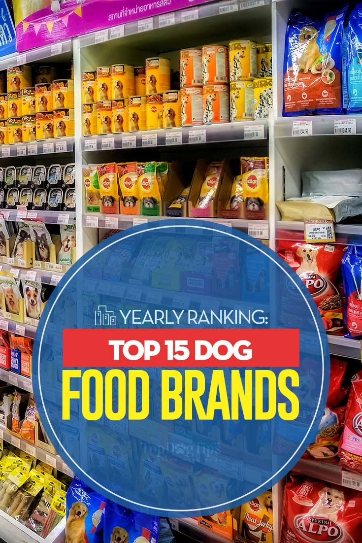 15 Top Dog Food Brands 2020 Review Top Dog Food Brands Top
