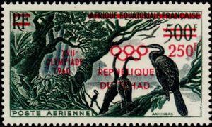 African Darter (Anhinga rufa)