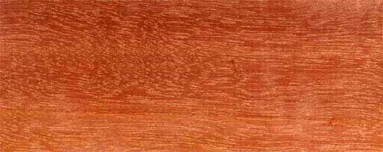 Wood Species for Hardwood Floor Medallions, Wood Floor Medallions, Inlays, Wood Borders and Block parquet - MASSARAN DUBA