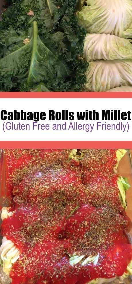 A delicious gluten free and allergy friendly recipe for cabbage rolls! These are filled with ground pork and millet and are topped off with tomato sauce. . .  #GlutenFree #Recipes #AllergyFriendly #DairyFree #EggFree #NutFree #SoyFree #FishFree #WheatFree #cabbagerolls #allinonemeal #kidfriendly #dinner #maindish