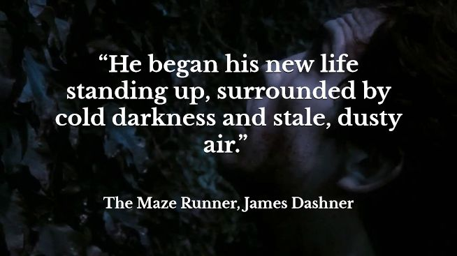 Maze Runner Quotes With Page Numbers: 139 Best Images About Maze Runner On Pinterest