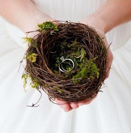 nid de branches presenter alliances mariage foret