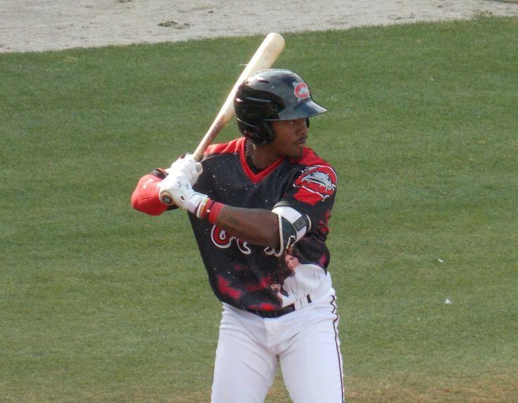 Troy Stokes Jr, Carolina Mudcats
