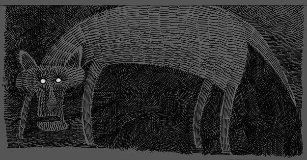 tapetum lucidum draw some halloweenie cats
