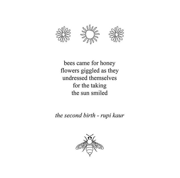 rupi kaur the sun and her flowers download