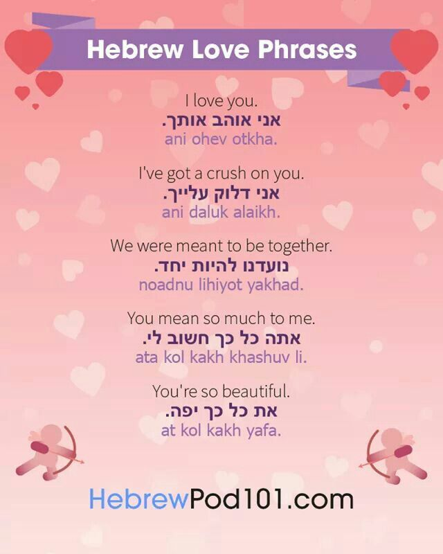 Basic Hebrew Phrases Every Israeli Tourist Should Know