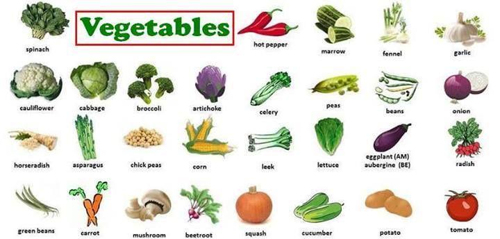 Vocabulary : Vegetables