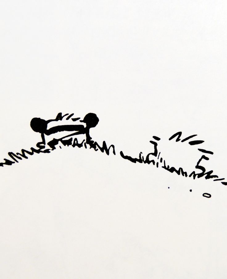 """Calvin and Hobbes QUOTE OF THE DAY (DA): """"Weekends don't count unless you spend them doing something completely pointless.""""  -- Bill Watterson   (words to live by)"""