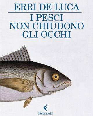 i_pesci_non_chiudono_gli_occhi_erri_de_luca.jpg (320×400)