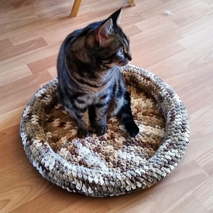 Diy cat basket