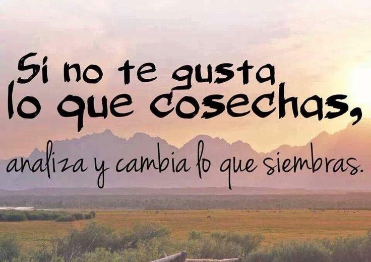 Ana Belen Arcones (@BelenArcones) | Twitter