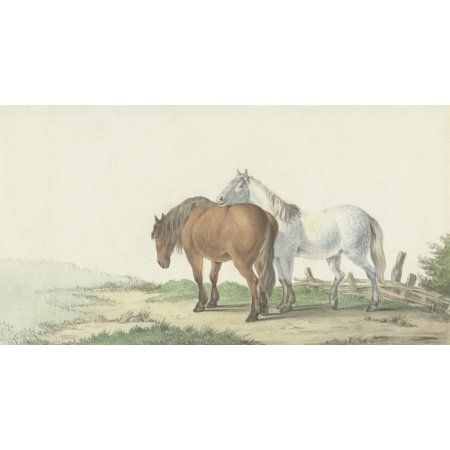 A Brown And White Horse On A Road Next To A Fence Canvas Art - (24 x 18)