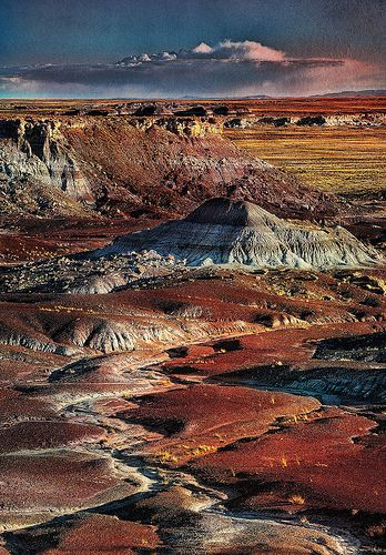 Painted Desert, Arizona --It honestly looked more beautiful than this in person!