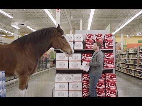 Watch The Best 2016 Super Bowl Commercials & Pick Your Favorite | News For Shoppers